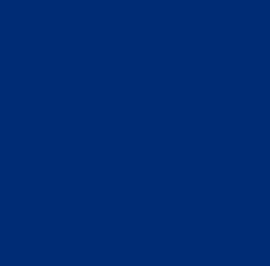 Bleu outremer Ral 5002